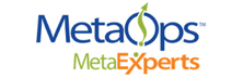 MetaOps: Top-Tier Interim OpEx Talent